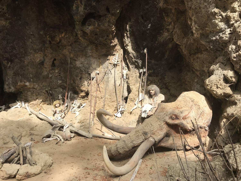 Múzeum praveku - Prepoštská jaskyňa - otváracie hodiny a cenník | Slovenský cestovateľ